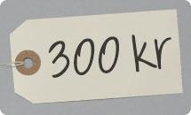 300 kr presentkort